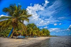 Jungle Jeanies By the Sea Hopkins Belize seaside cabanas, restaurant, yoga classes, beach, SUP rentals