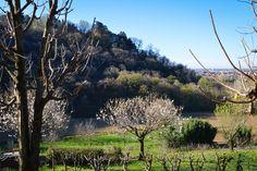 I campi in Val d'Astino - Bergamo Alta