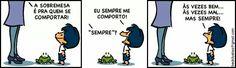 Armandinho - Comportamento