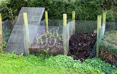 7 Solutions To Your Most Common Compost Problems | Rodale's Organic Life