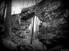 sewanee rock outcropping - Google Search