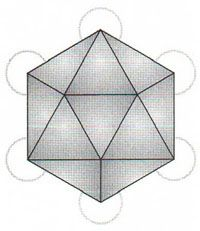 The Form Of Icosahedron As Seen By Joining Centres Spheres Metatrons Cube Which In Is 13 Circles Fruit Life