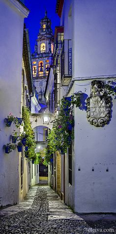 Dusk in Street of flowers, Cordoba, Spain