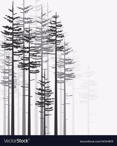 Find Vector Illustration Trees Landscape Background Forest stock images in HD and millions of other royalty-free stock photos, illustrations and vectors in the Shutterstock collection. Thousands of new, high-quality pictures added every day. Pine Tree Silhouette, Forest Silhouette, Forest Drawing, Forest Tattoos, Forest Illustration, Landscape Background, Tree Art, Free Vector Images, Adobe Illustrator