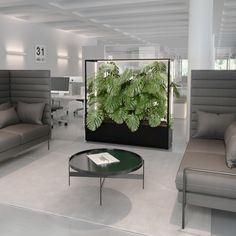 CUBE planted as room divider for meeting areas and open spaces. Ideal for co-working spaces and mobil offices the ideal solution for modern flexible interior architecture. Improves work environment in open office interior. Open Office, Cool Office Space, Office Space Design, Workspace Design, Office Interior Design, Office Interiors, Modern Interior, Interior Architecture, Cubes