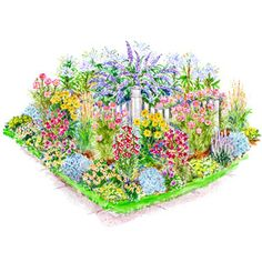 Garden Plans for Birds & Butterflies -- for the front yard