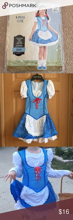 👠Dorothy Costume👠 Only selling dress. Worn ONE time. In PERFECT CONDITION!  ***Does NOT come with Hair bows, bobby socks, white shirt underneath or basket. Very cute for costume wear or just playing dress up. (Walmart sells the Ruby Red Slippers for about $10) Costumes Halloween