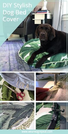 DIY Dog Bed   Decor for Stylish Dogs   Dog Mom Craft