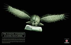 The Late Night Standard: Owl