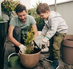 Whether this is your first year attempting a garden, or you're a seasoned pro, we've got some tips to help make this your best growing season yet.