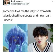 Goddamn shark tale, wEll ThEN Woozi, Jeonghan, K Pop, Bts Got7, Day6 Sungjin, Haha, Shark Tale, Won Woo, Seventeen Memes