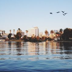 MacArthur Park Lake. Los Angeles - it's funny how ghetto this really is and how beautiful it could look