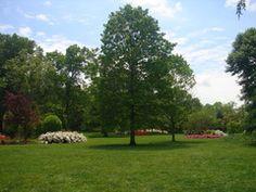Sherwood gardens in Baltimore for picnic