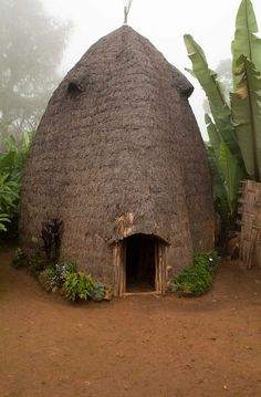 Africa | A traditional Dorze beehive homestead at Checha, Ethiopia | © Adam Lees