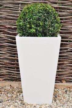 Ancona  White Glazed Tapered Square Pot