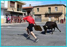 De Todo un Poco: Vacas de Hermanos Marcén Black Lagoon, Cows, Siblings