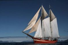 """""""Noorderlicht"""" - Gaff rigged two masted schooner Arctic Cruise, Antarctica Cruise, Abel Tasman, Sea Pictures, Wood Boats, Small Boats, Small Island, Tall Ships, Sailing Ships"""