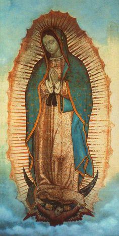 Our lady of Guadalupe - Abbey-Roads: The color rose... the color of the dawn... and Our Lady. Abbey-roads.blogspot.com
