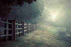 Sammamish Fence