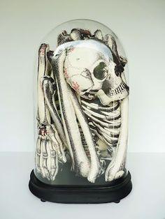 je kiffe et surkiffe Ouvre, Cabinet De Curiosité, Anatomie, Art  Contemporain, Mort 0aa9ddf867e8