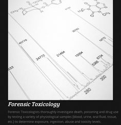 how to become a toxicologist