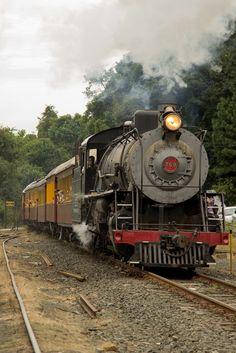 Steam by Wellington Nascimento
