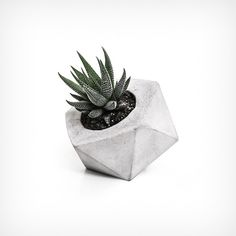Pflanztopf Geometrie groß | Die SELLERIE