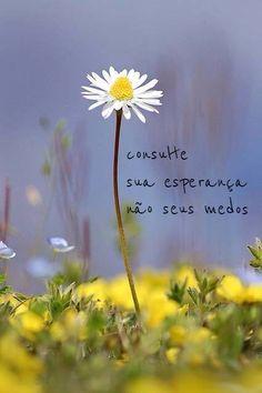 """✪ """"Consulte su esperanza, no sus miedos""""  sabedoria - viva a vida"""