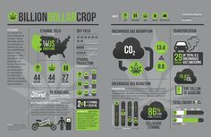 James_Goodhue-Billion_dollar_crop_2-1024x668.jpg (1024×668)