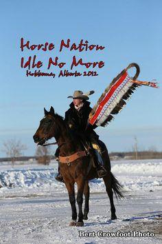 horse nation #idlenomore