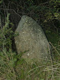 Menhir chico en el barrranco de San Bartolomé de Gavín.