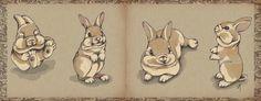 Bunny sketch by Veronica Minozzi