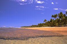 Bahia: veja as 12 melhores praias do estado