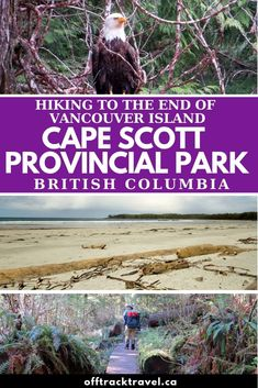 The Cape Scott Trail is a spectacular journey through lush rainforest, sand dunes, stunning beaches and fascinating history at the tip of Vancouver Island Hiking Guide, Hiking Trails, Travel Ideas, Travel Inspiration, Lighthouse Trails, Canada Destinations, Western Canada, Visit Canada, Canadian Rockies