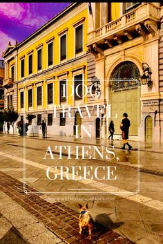 Watch the world-traveling yorkie Roger Wellington make his alpha mark in the ancient city Athens! #athens #greece #dogsingreece #dogsinathens #europe #dogtravel #travelwithdog #dog #dogs #yorkie #yorkies #howtotravelwithdog #vacation #travel #wanderlust #dreamvacation #petblogger #dogblog #dogblogger #travelingdog #dogtips #dogtraveltips #dogfriendly Road Trip Europe, Europe Travel Guide, Travel Destinations, Travel Abroad, Budget Travel, Travel Guides, Greece Vacation, Greece Travel, Greece Itinerary