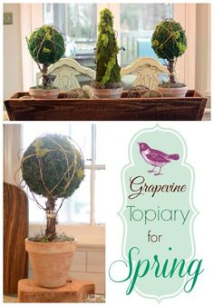 Easy Moss Topiary for spring! #spring #diycrafts