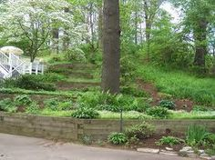 terraced landscaping - Google Search