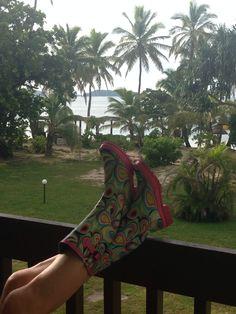 Boots enjoying Mana Island view