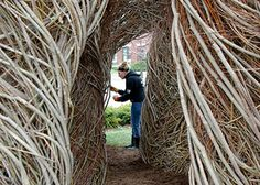 willow and red maple sculpture by Patrick Dougherty