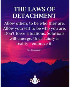 Wisdom Quotes, True Quotes, Motivational Quotes, Inspirational Quotes, Zen Quotes, Positive Affirmations, Positive Quotes, Gratitude Quotes, Positive Vibes