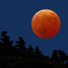 Red full moon By: Tone