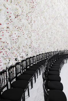 wall of orchids at Dior Haute Couture Show   via cabbagerose