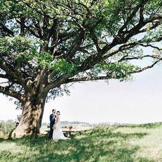 Ohhh was für ein wunderschönes Foto von diesem tollem Brautpaar und unser www.bellejulie.de Brautschleier ist auch mit von der Partie 🌿Repost @annettvonloeffelholz