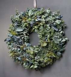 Beautiful (and fragrant) wreath of mixed eucalyptus varieties. If your climate is too cold to grow eucalyptus, try your local florist for a selection of different varieties.