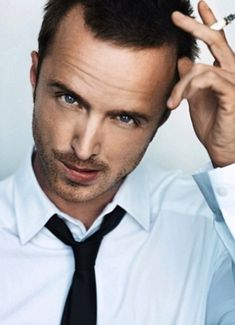 Aaron Paul : Breaking Bad is perfection I love Jesse I want a Jesse even if he does sell meth