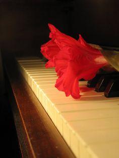gladiolas and piano by Heidi-V-Art