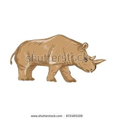 Illustration of a Northern White Rhinoceros Side  view done in hand sketch Drawing style.  #rhinoceros #sketch #illustration