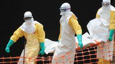 Republica Democrática do Congo esta livre  do virus do Ébola http://angorussia.com/noticias/mundo/republica-democratica-do-congo-esta-livre-do-virus-do-ebola/