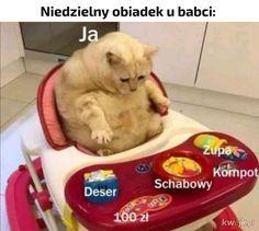 Obiad u babci - Ministerstwo śmiesznych obrazków - KWEJK.pl