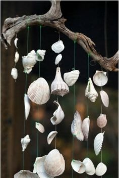 Shell Wind Chimes This guide is about sea shell wind chimes. A fun project that can include an adventure collecting shells at the beach.This guide is about sea shell wind chimes. A fun project that can include an adventure collecting shells at the beach. Seashell Art, Seashell Crafts, Beach Crafts, Diy And Crafts, Arts And Crafts, Seashell Mobile, Summer Crafts, Crafts To Make And Sell, Flower Crafts